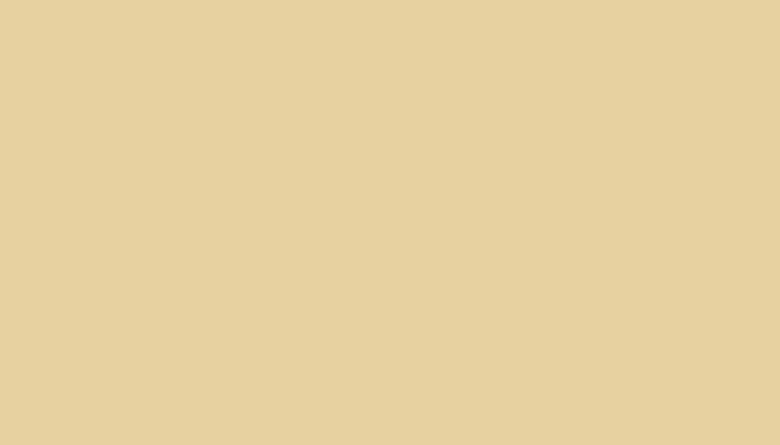 detalle_STB-485