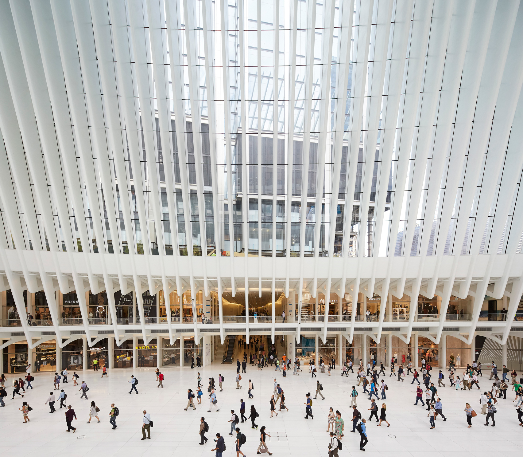 oculus new york estructura