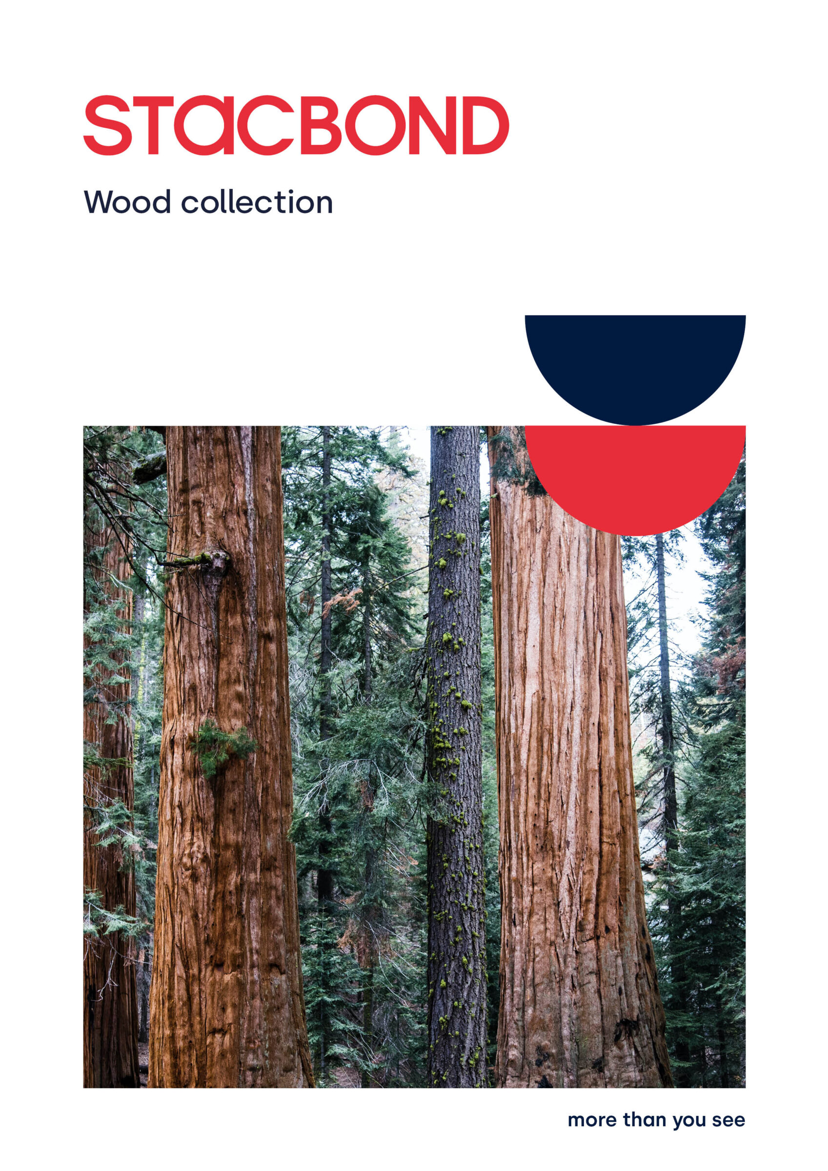 Wood_Collection_2021