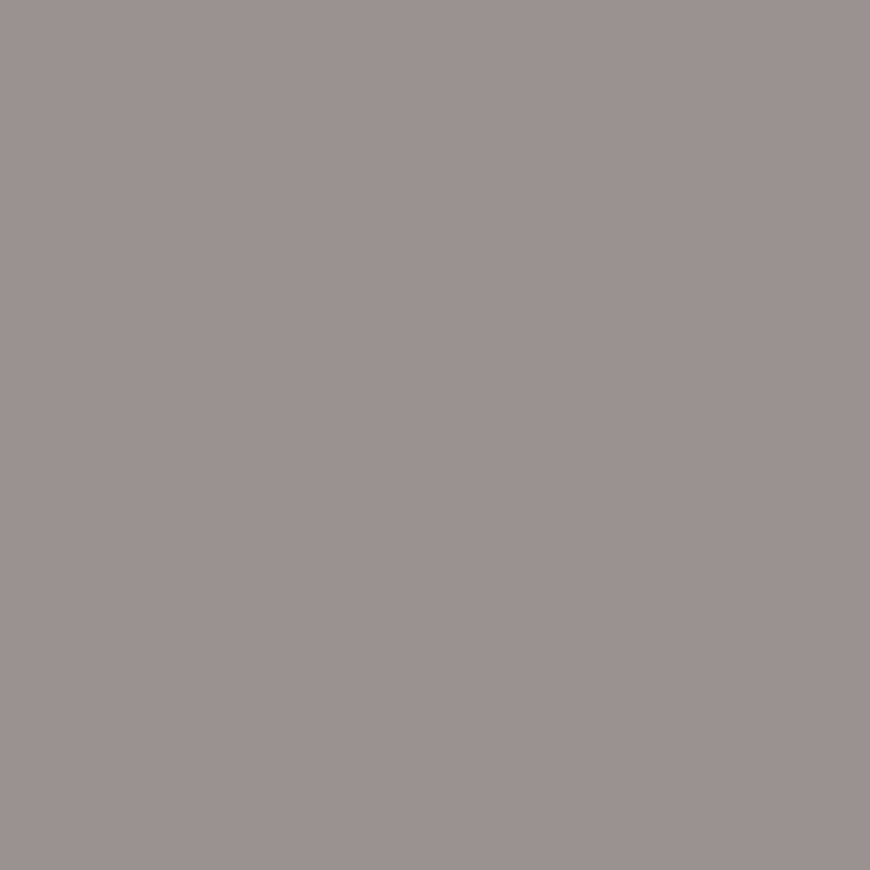 STB-4N4_PLATINUM GREY